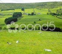 Sperrin Mountains, County Tyrone, Northern Ireland Stock Photos