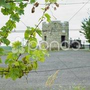 Lampelberg castle, Czech Republic Stock Photos