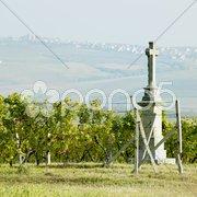 Cross with vineyard, Southern Moravia, Czech Republic Stock Photos
