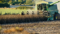 Combine harvester cutting crop in field Stock Footage