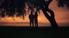 Couple Staying under a big Tree, Hugging each other and Looking at Sunset Stock Footage