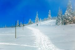 Beautiful mountain snowy landscape and snow covered trees. Man silhouette in Stock Photos