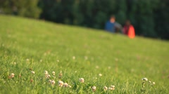 Unrecognizable couple in blue and red clothes having picnic on the grass in city Stock Footage
