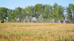 Tractor ride on the harvest Stock Footage