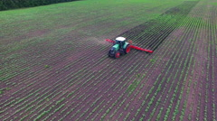 Tractor pulls on the field cultivator: which cuts the weeds. airview Stock Footage
