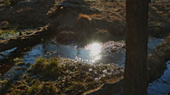 Sun reflection in the water, spring Stock Footage