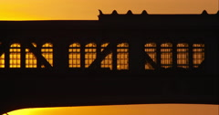 New York City bridge silhouetted by orange sky during sunset Stock Footage