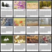 2017 nature calendar with seasonal images ( all pictures are mine so there is Stock Photos