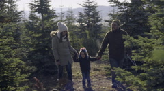 Family Hold Hands, Walks Through Christmas Tree Farm In Search Of A Tree Stock Footage