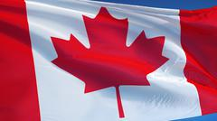 Canada flag, close up, isolated with clipping path alpha channel Stock Photos