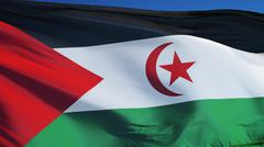 Sahrawi Arab Democratic Republic flag against clean blue sky, close up, isola Stock Photos