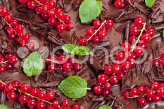 Red currant and mint with chocolate Stock Photos
