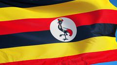 Uganda flag, close up, isolated with clipping path alpha channel Stock Photos