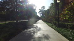 Smooth movement of the camera along the road in the park Stock Footage