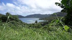 Huahine island landscape bay French Polynesia Stock Footage