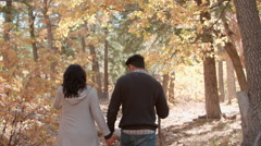 Hispanic couple hold hands walking in a forest, back view Stock Footage