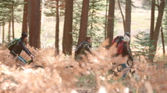 Group of friends cycling on a forest path, side view Stock Footage