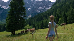 Young woman approaching cows on pasture in Alpine valley Stock Footage