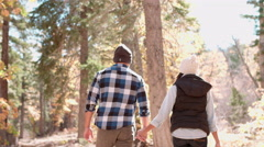 Adult couple hold hands walking through a forest, back view Stock Footage