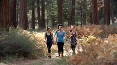 Group of young women runners walk in a forest talking Stock Footage