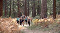 Group of young adult friends run past camera in a forest Stock Footage