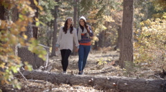 Lesbian couple enjoy a walk holding hands in a forest Stock Footage