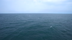 Aerial shot of open ocean. Blue sky and horizon. Stock Footage