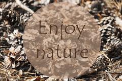 Autumn Greeting Card, Quote Enjoy Nature Stock Photos