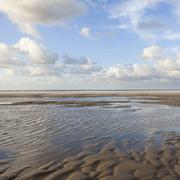 Wet beach and reflections of clouds with blue sky in holland Stock Photos