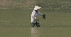 Vietnamese woman finishing work of cleaning water from weed Stock Footage