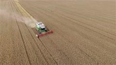 Flight over harvester wheat rye field aerial 4k video. Rural combine crops grain Stock Footage