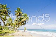 Sauteurs Bay, Grenada Stock Photos