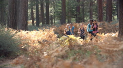 Group of five young adult women running in a forest Stock Footage