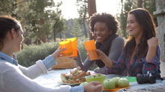 Three female friends at a picnic table making a toast Stock Footage