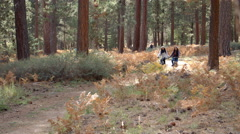 Lesbian couple riding bikes in a forest holding hands Stock Footage