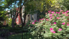 Homes and gardens Washington DC Stock Footage
