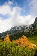 Great Cold Valley, Vysoke Tatry (High Tatras), Slovakia Stock Photos