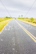 Road in Everglades National Park, Florida, USA Stock Photos
