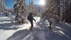 FOLLOW: Freeride snowboarder girl riding powder snow in mountain spruce forest Stock Footage