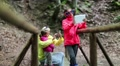 Family with electronic devices on the wooden bridge in the forest Footage