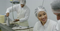 Workers in a seafood processing factory, preparing fresh fish for sale Stock Footage