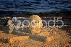 Sand skull and bones Stock Photos