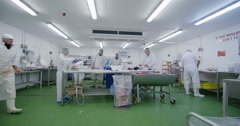 Group of butchers working in a fresh meat processing factory Stock Footage