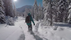 FOLLOW: Freeride snowboarder girl riding fresh powder snow in snowy mountains Stock Footage