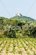 Castle Saint Martin with vineyard, Languedoc-Roussillon, France Stock Photos