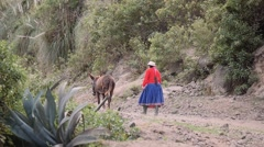 Female peasant with donkey Stock Footage
