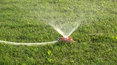 Landscaping irrigation system with watering pipe and diffusion sprinkler Stock Footage