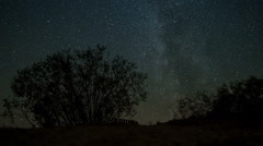 The stars and the Milky Way on the Curonian Spit. Timelapse Stock Footage