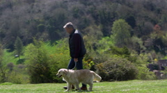 Mature Man Takes Dog For Walk In Countryside Shot On R3D Stock Footage