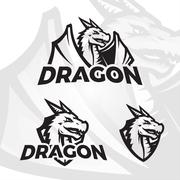 Dragons sport mascot. College league insignia, Dragon school team vector Stock Illustration